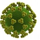 Ilustración de virus del sida