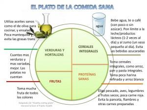 El plato de la comida sana