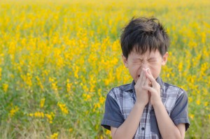 Alergia al polen